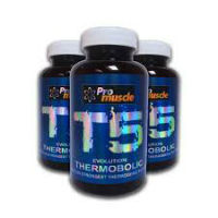 T5 Thermobolic review